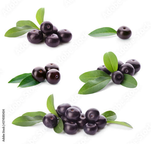 Obraz na plátně Set of fresh acai berries with green leaves on white background