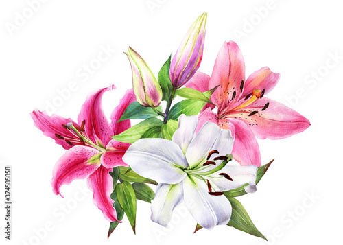 Elegant lily bouquet, pink white lilies on an isolated white background, watercolor stock illustration Poster Mural XXL