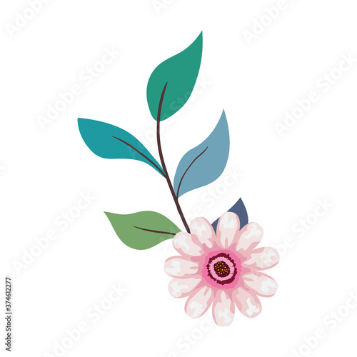 Photo pink flower drawing with leaves design, natural floral nature plant ornament gar