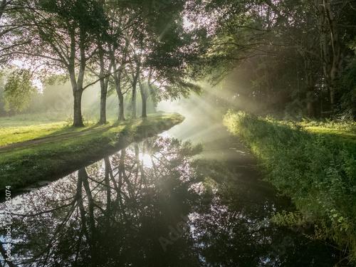 Fotografie, Obraz morning dawn in majesty of light (Landscape)