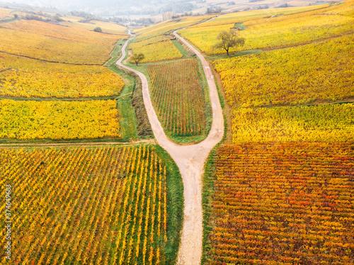 Photo vue aérienne d'une route dans les vignes automnales de Bourgogne