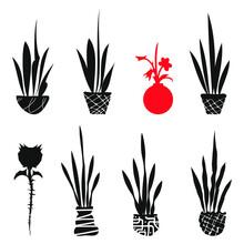 Stem Flower Plant Pots Grass L...