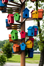 Colorful Birdhouse In The Park