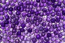 Close Up Of Translucent Purple...