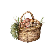 Watercolor Autumn Composition With Mushrooms, Grass And Leaves. Hand Painted Rustic Card With Boletus Isolated On White Background. Floral Illustration For Design, Print, Fabric Or Background.