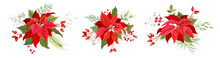 Christmas Red Poinsettia Vecto...