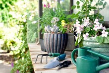 Outdoor Potting Bench Table With Garden Tools And Potted Plants And Watering Can