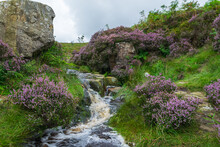 Waterfall In Ilkley Moor