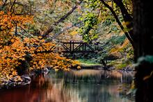 Fall Scenic Stone Walking Brid...