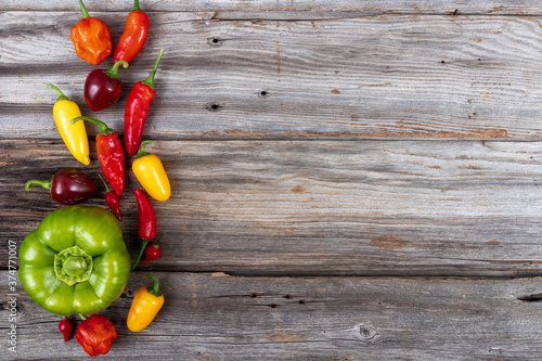 Tela mix pepper variety harvest on a wood table