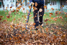 Cleaning Leaves In The Garden....
