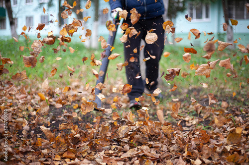 Cleaning leaves in the garden Wallpaper Mural