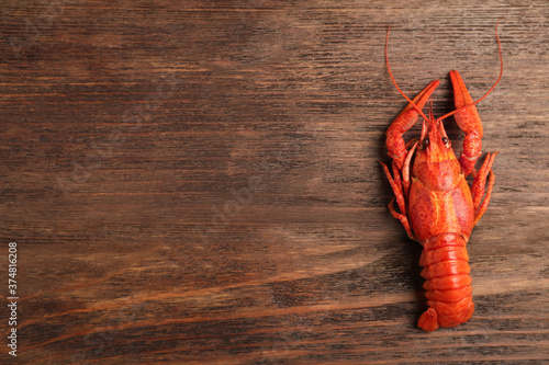 Delicious boiled crayfish on wooden table, top view Wallpaper Mural