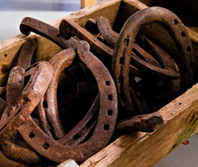Pile Of Rusted Old Horse Shoes Abandoned In A Wooden Box.