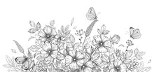 Hand Drawn Wild Flowers, Dog-Rose And Butterflies