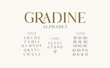 Classic Typography Elegant. Alphabet And Numbering  Uppercase. Vector Illustration Word.