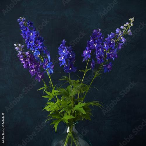 Fotografering Blue delphinium flowers