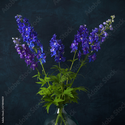 Fotomural Blue delphinium flowers