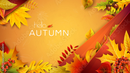 Obraz Autumn illustration for text with fallen leaves - fototapety do salonu