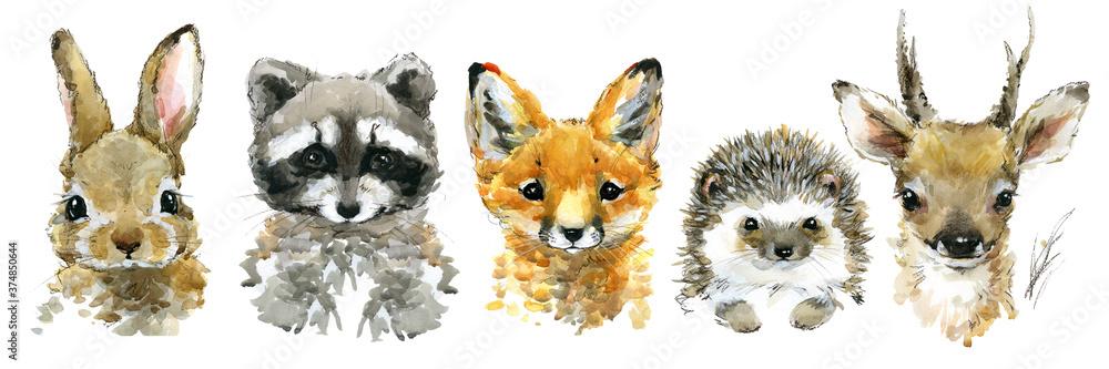 Fototapeta cute funny little animals watercolor set
