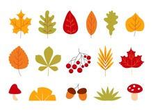 Hand Drawn Autumn Leaves. Abst...
