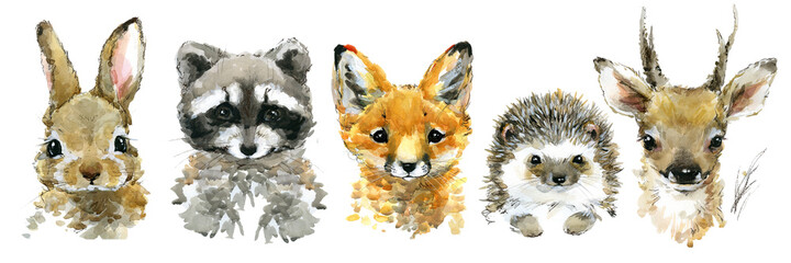 cute funny little animals watercolor set