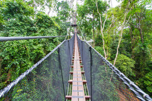 Doi Tung Tree Top Walk, Chiangrai, Thailand