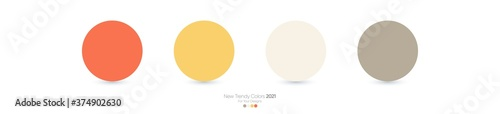 Fototapeta Trendy Pantone color palette 2021 for fashion, home, interiors design, web design, mobile application, social media template, UX and Ui designs, drawing obraz na płótnie