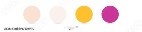 Fotografija Trendy Pantone color palette 2021 for fashion, home, interiors design, web desig