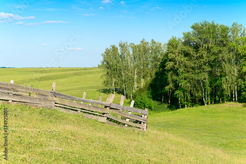 Fototapety, obrazy: Summer landscape with forest and old wooden fence