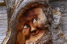 Closeup Shot Of A Dwarf Face  Carved On A Tree