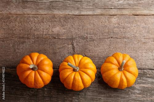 Fotografía Beautiful mini pumpkins on wooden planks, holiday decoration