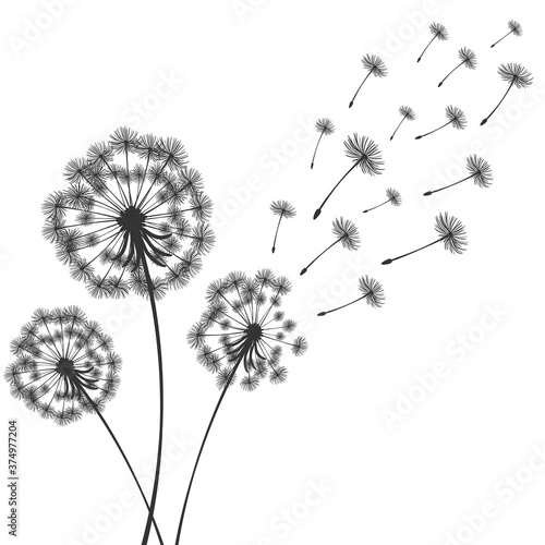 Papel de parede Vector illustration dandelion time