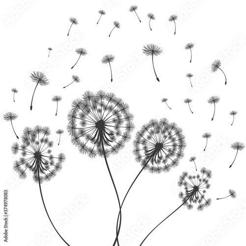 Photo Vector illustration dandelion time