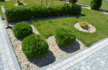 Design Of Landscaping In The G...