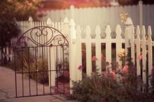 Dreamy Sunlit Garden With Whit...