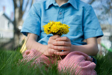 Child In Grass Holds On To A Bouquet Of Dandelion Flowers