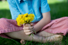 Child Holds Bouquet Of Dandelion Flowers While Sitting In Grass