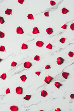 Red Rose Petals On A Marble Background