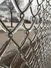Ice Covered Chain Link Fence