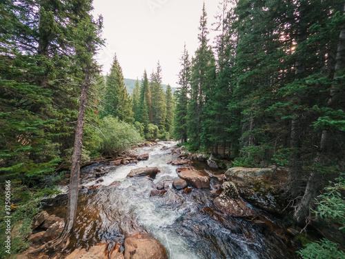 Creek running through the mountains in Colorado Canvas Print