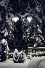 Street Lamp On A Snowy Night