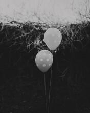 Polka Dot Balloons Floating Ou...