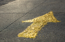 Gold Sequin Arrow Pointing For...