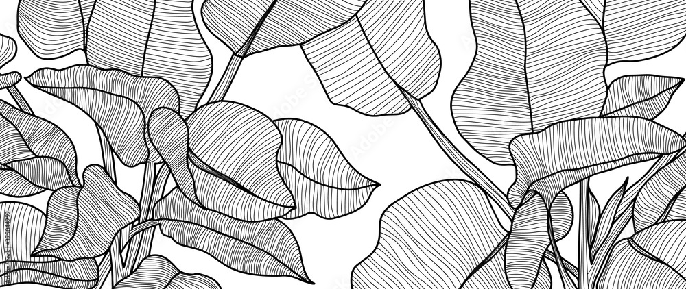Fototapeta Luxury black and white art deco wallpaper. Nature background  with  with compositions of hand drawn tropical flowers, Plants, paradise bouquet. Vector illustration.