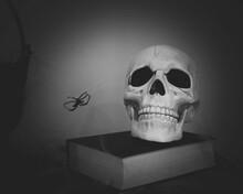 A Halloween Theme Photo With A...