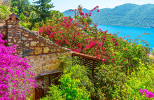 Lush Garden On The Slope, Kalekoy, Kekova, Turkey