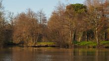 Petit étang Dans Une Ambiance Printanière