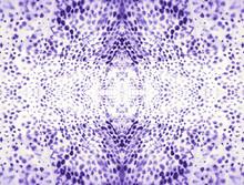 Snake Texture Seamless. Purple...