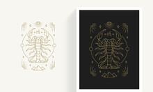 Zodiac Scorpio Horoscope Sign Line Art Silhouette Design Vector Illustration.